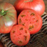 cherokee_purple_tomatologue_2