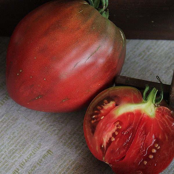 coeur_de_beouf_noire_tomatologue