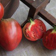 coeur_de_beouf_noire_tomatologue_1